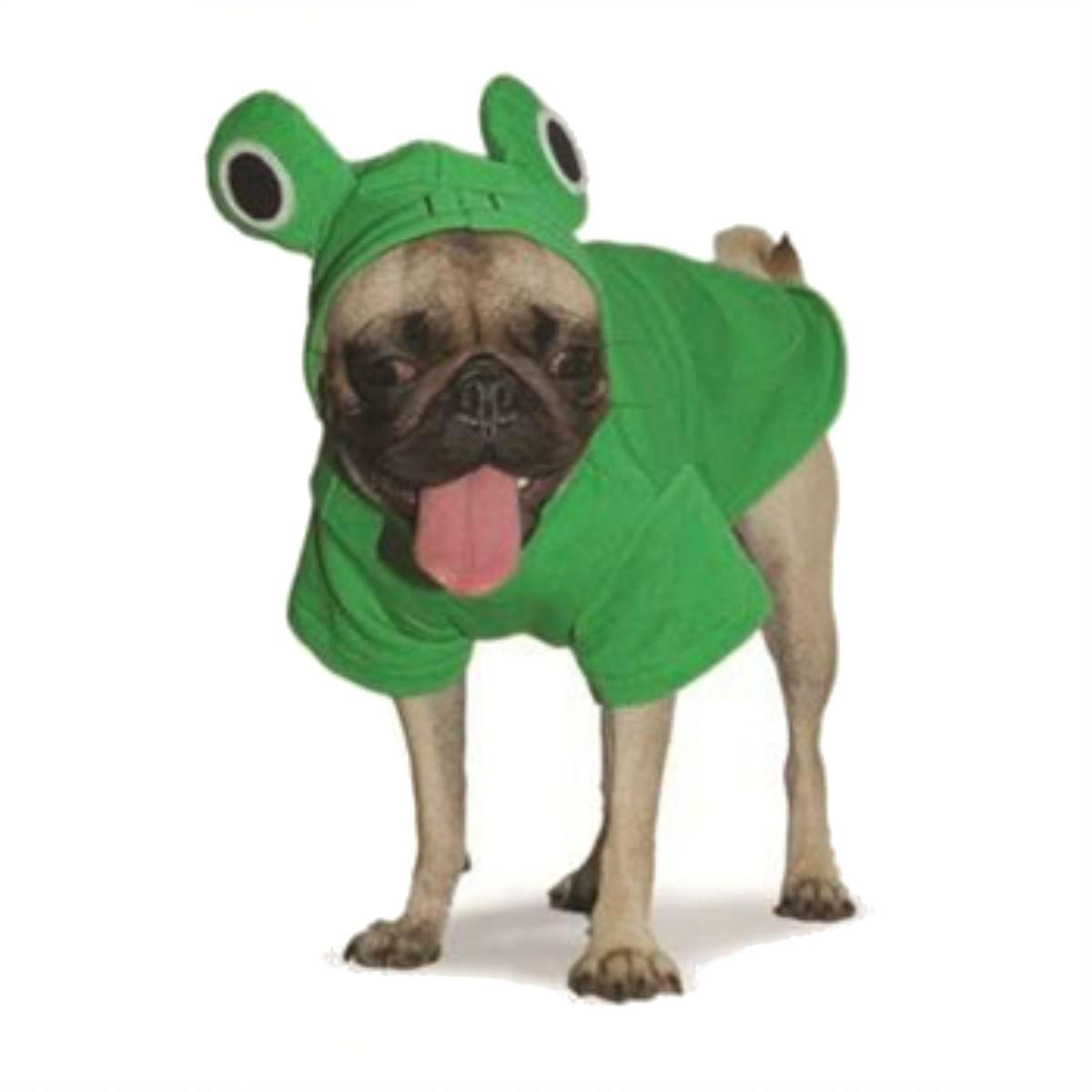 Froggy Dog Sweatshirt by Dogo