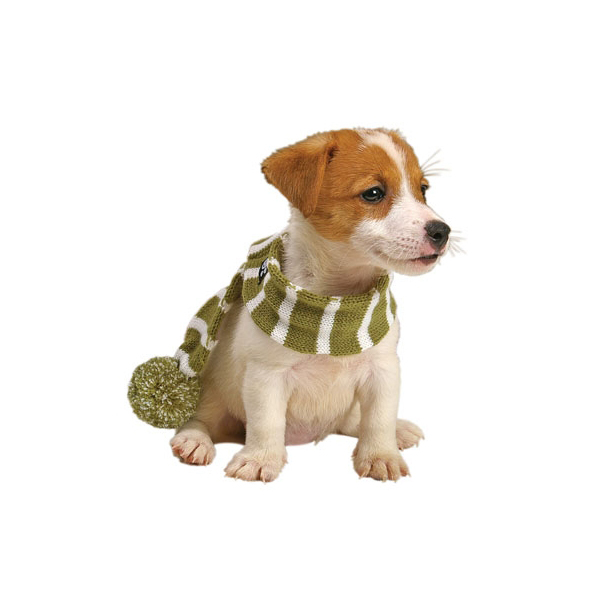 Frosty's Snowflake Dog Scarf - Sage Green