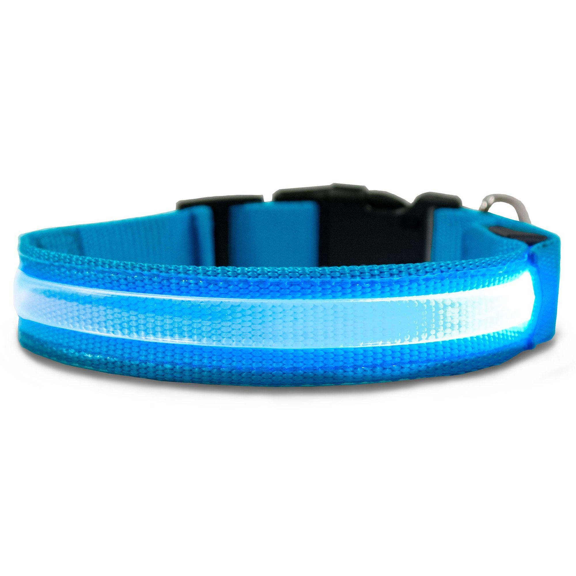FurHaven LED Safety Pet Collar - Blue