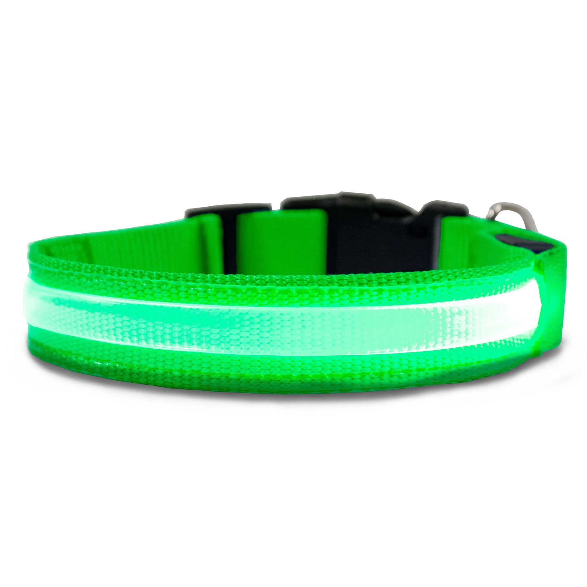 FurHaven LED Safety Pet Collar - Green