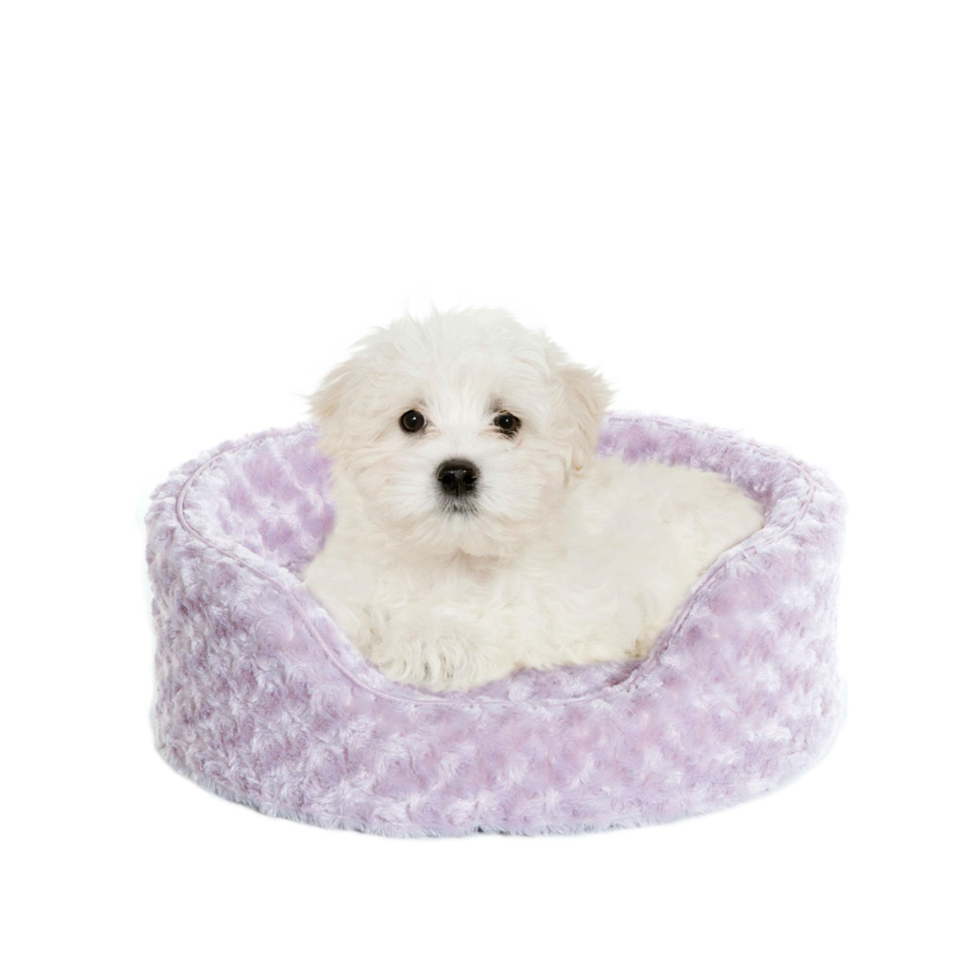 FurHaven Ultra Plush Oval Pet Bed - Lavender