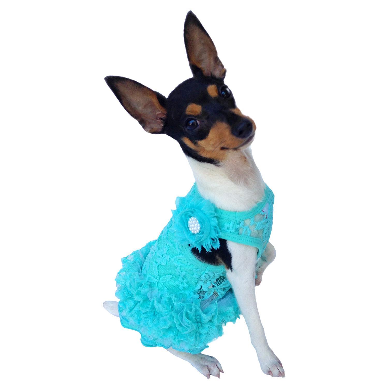 Garden Party Tutu Dog Dress by The Dog Squad - Seafoam