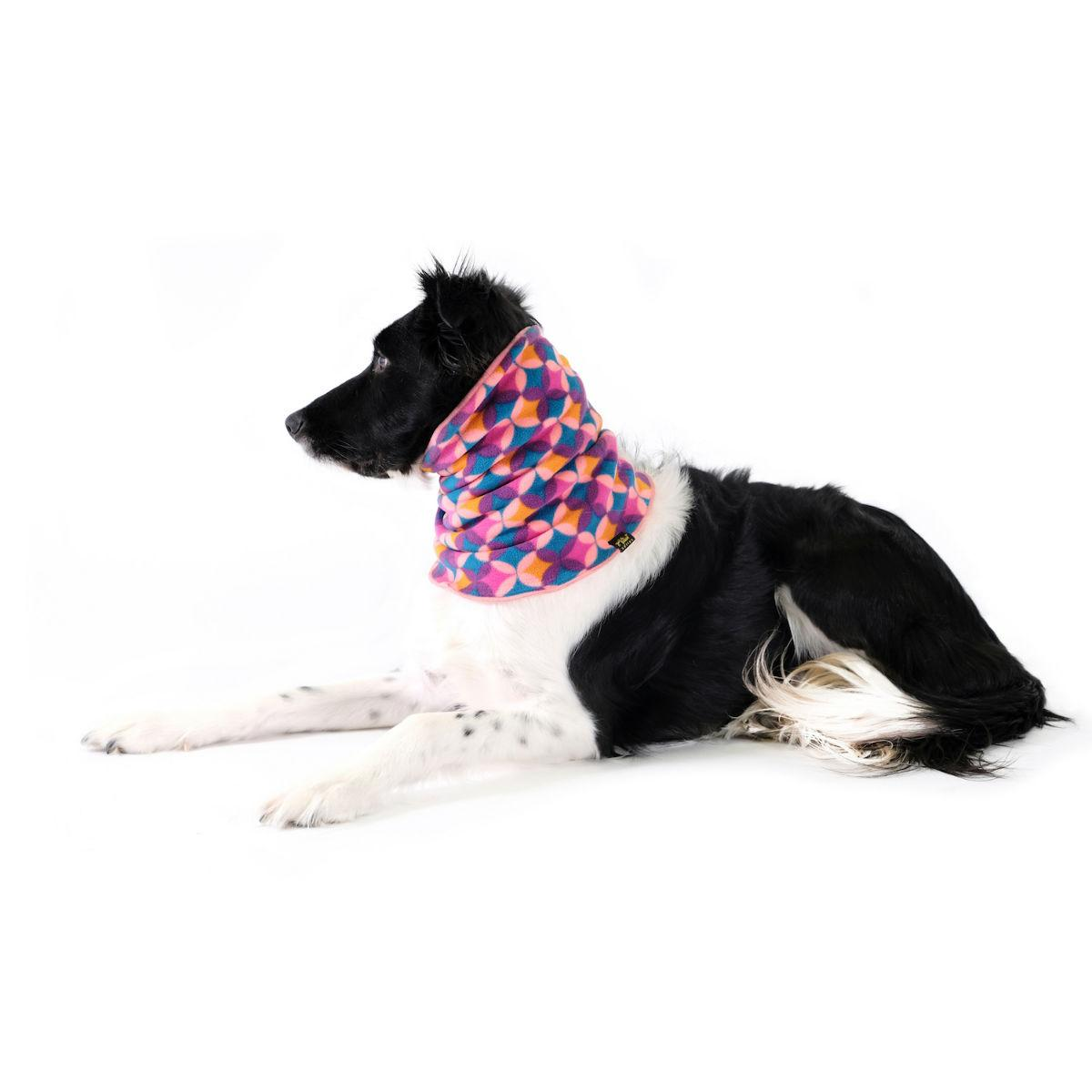 Gold Paw Dog Snood - Coral/Summer Mod