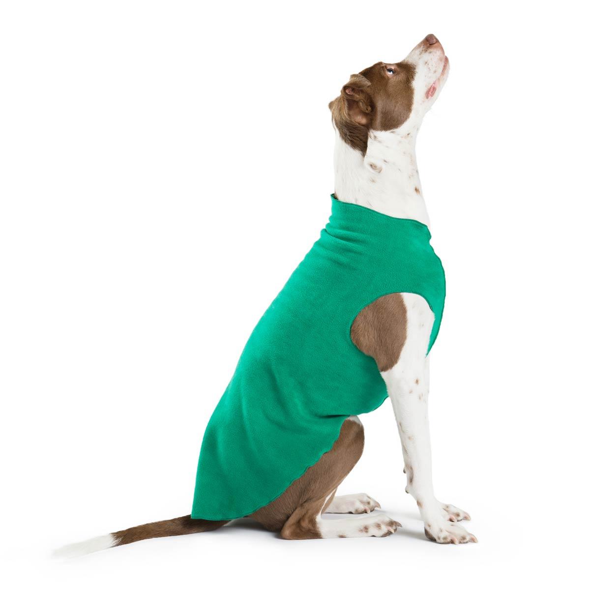 Gold Paw Fleece Dog Jacket - Emerald Green