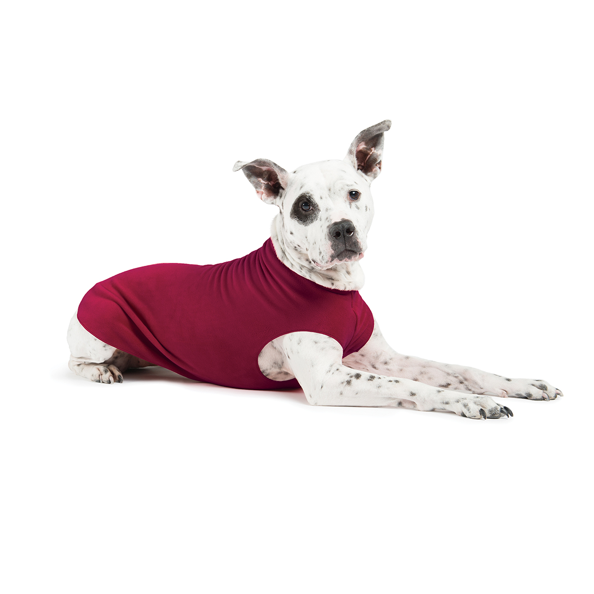 Gold Paw Fleece Dog Jacket - Garnet