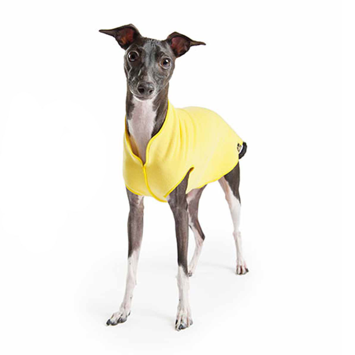 Gold Paw Fleece Dog Jacket - Sunflower Yellow with Same Day ...