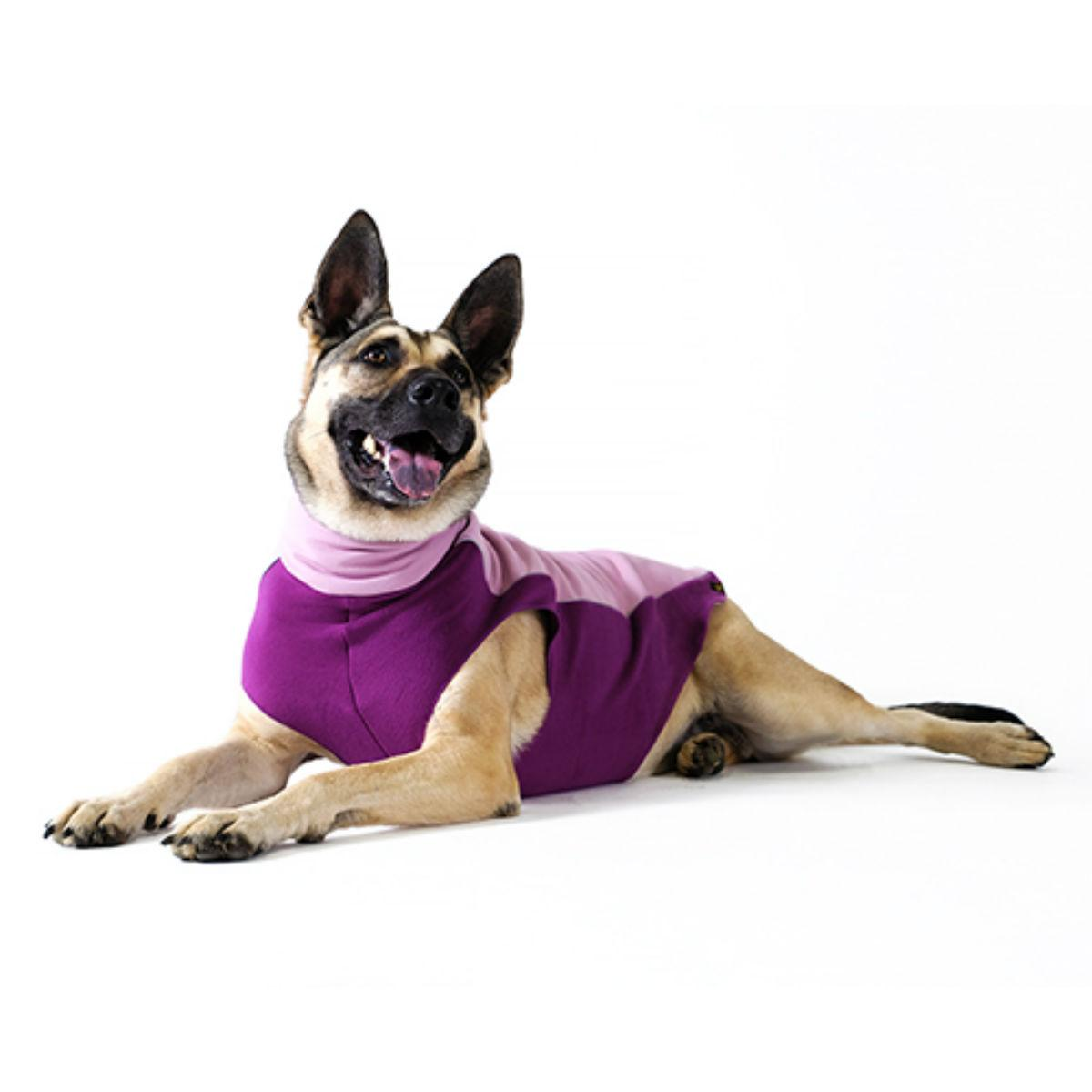 Gold Paw Portland Pullover Dog Jacket - Lilac and Eggplant