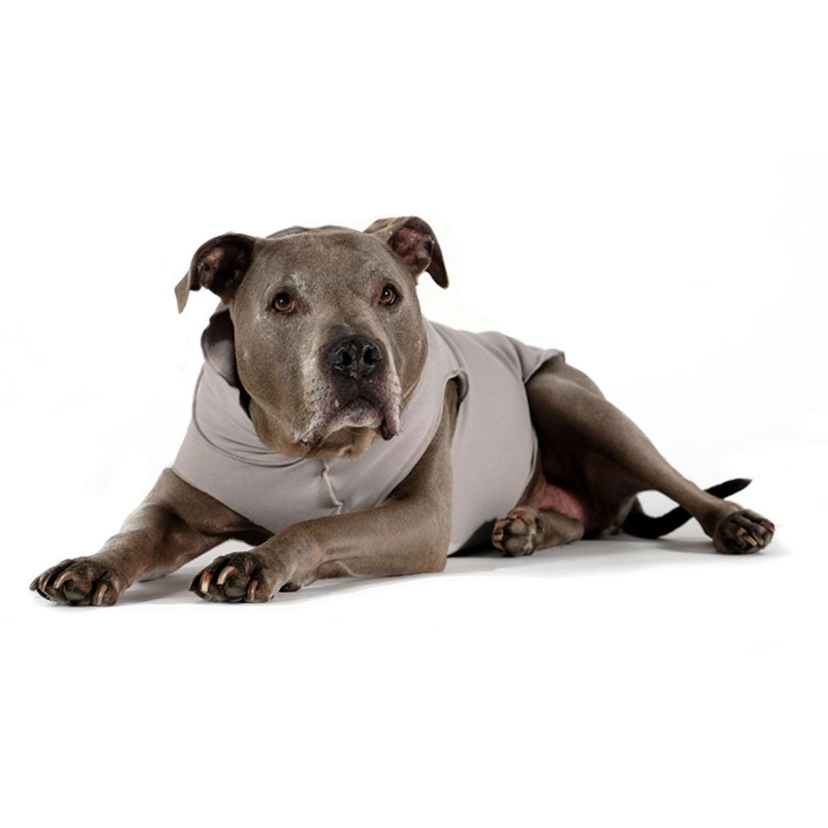 Gold Paw Santa Fe Dog Pullover - Silver Gray