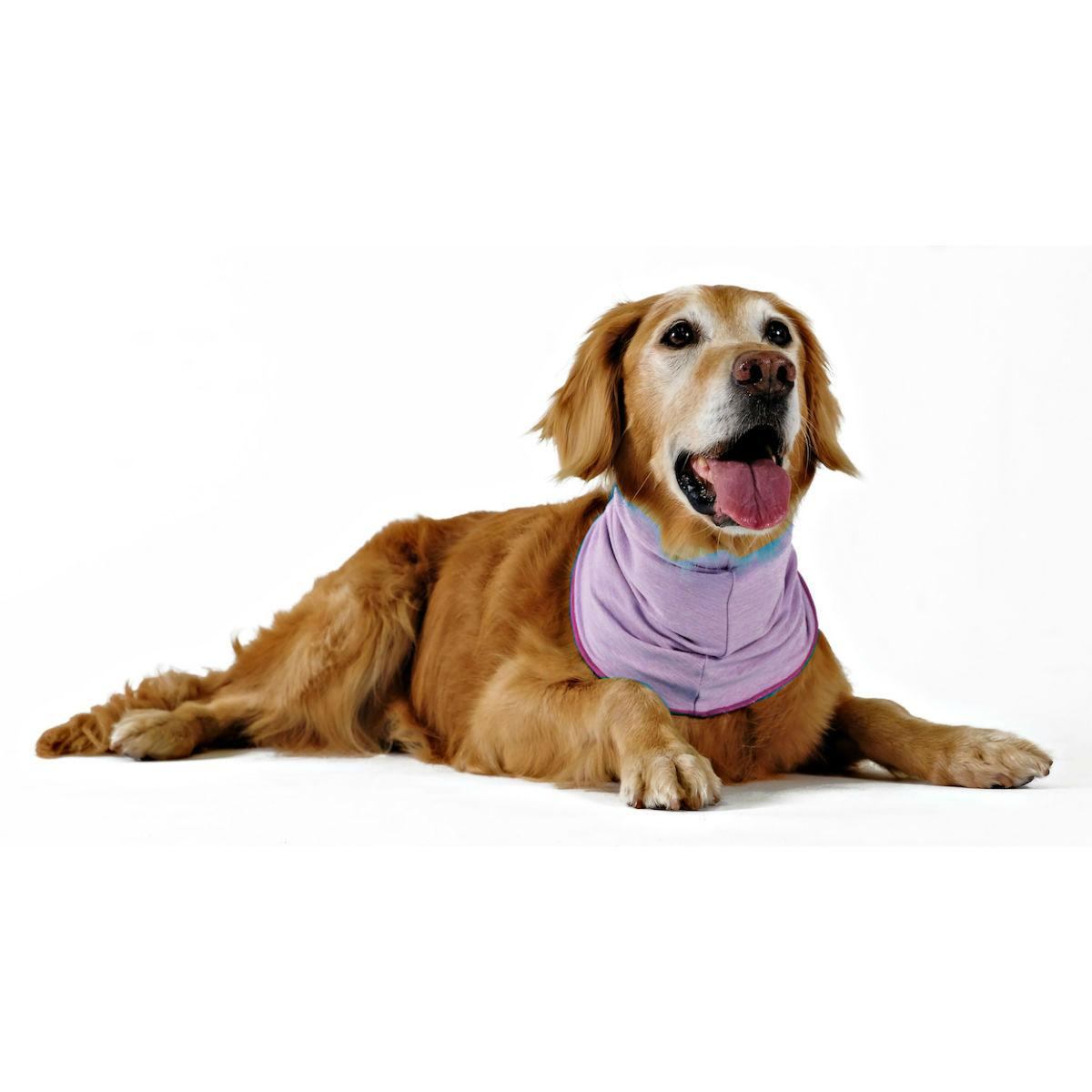 Gold Paw Sun Shield Dog Snood - Heather Violet