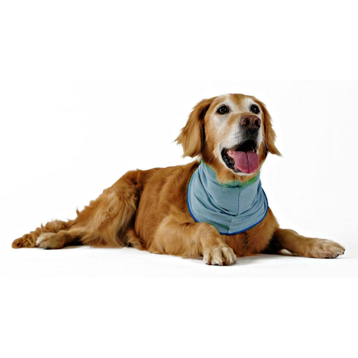 Gold Paw Sun Shield Dog Snood - Ocean Blue