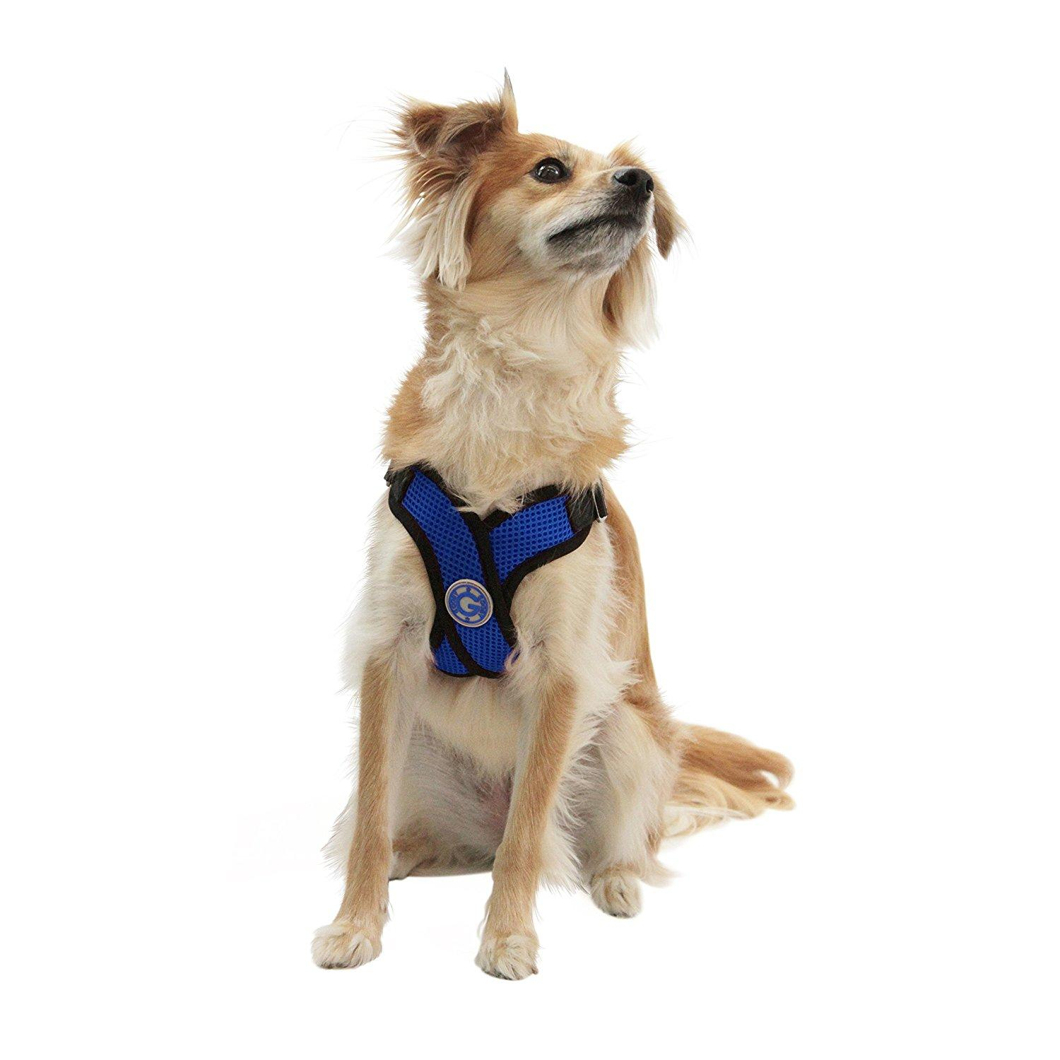 only buy multi functional ridgeback dog from pull freedom velvet a cushioning no with comforter on comfort harness