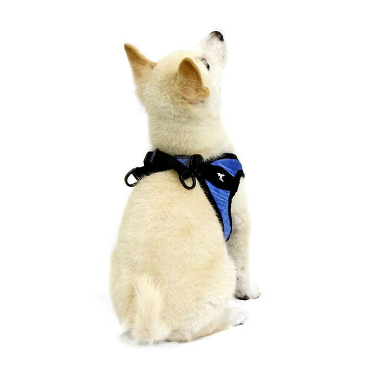 Gooby Escape Proof Easy Fit Dog Harness