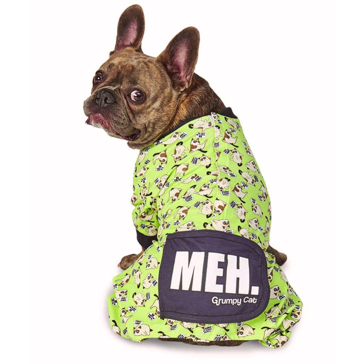 Grumpy Cat Meh Dog Pajamas - Green