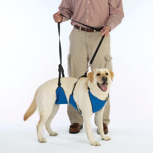 Guardian Gear Lift & Lead 4-In-1 Dog Harness