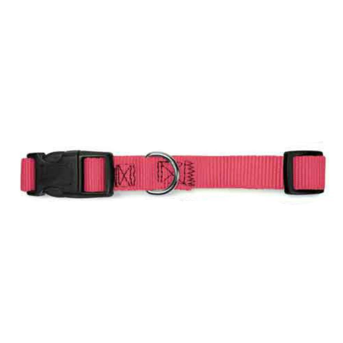 Guardian Gear Nylon Brites Dog Collar - Flamingo Pink