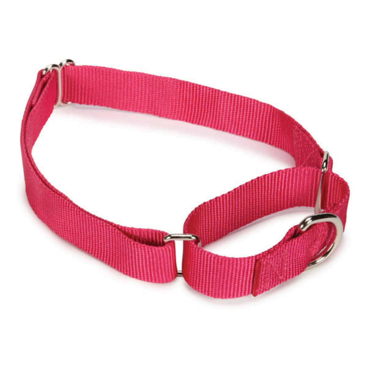 Guardian Gear Nylon Martingale Dog Collar - Raspberry