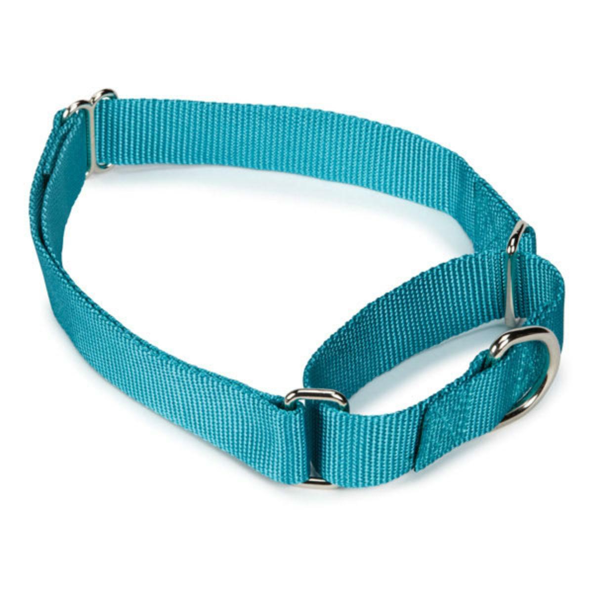 Guardian Gear Nylon Martingale Dog Collar - Bluebird
