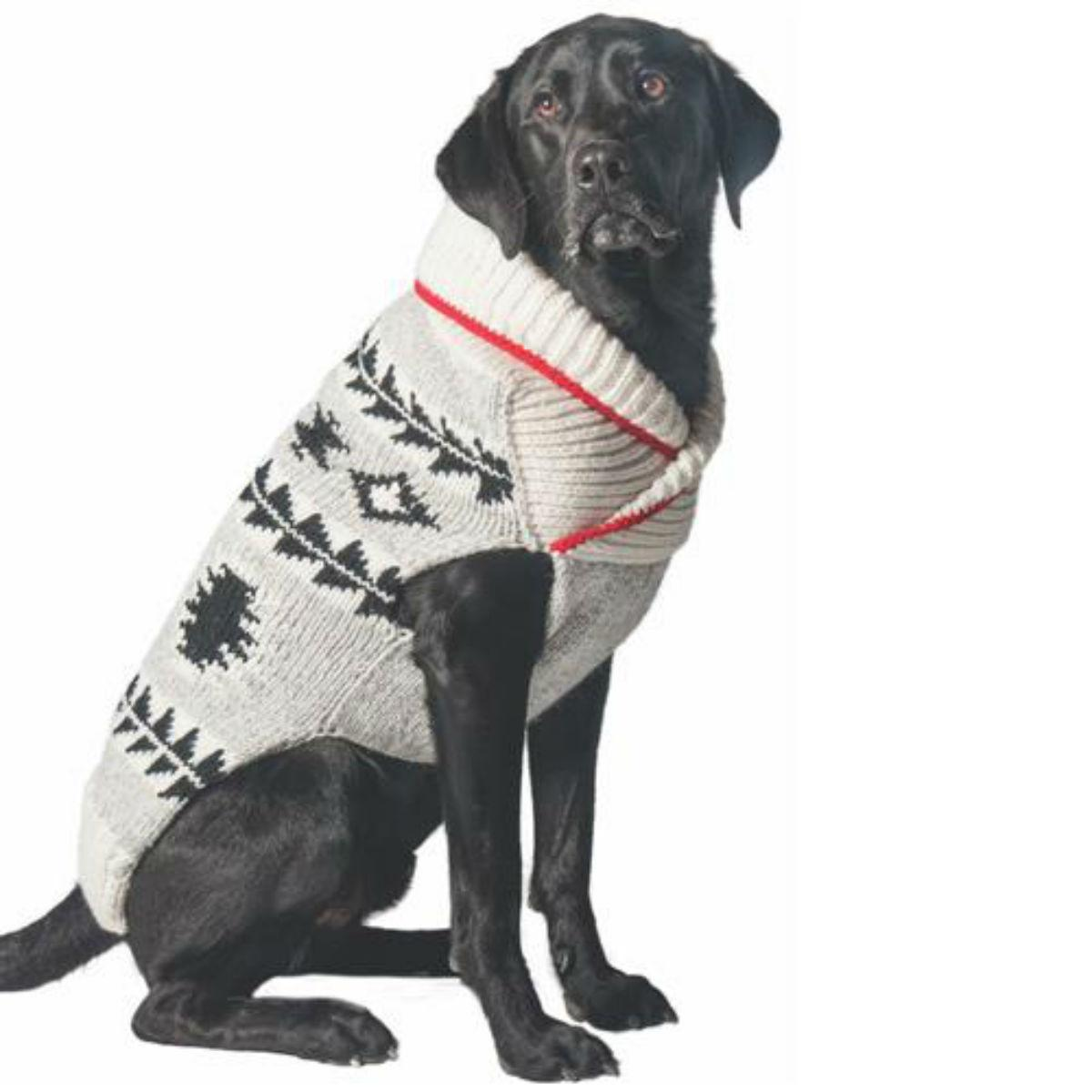 Handmade Jackson Wool Dog Sweater