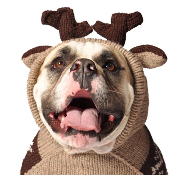Handmade Moosey Wool Dog Hoodie