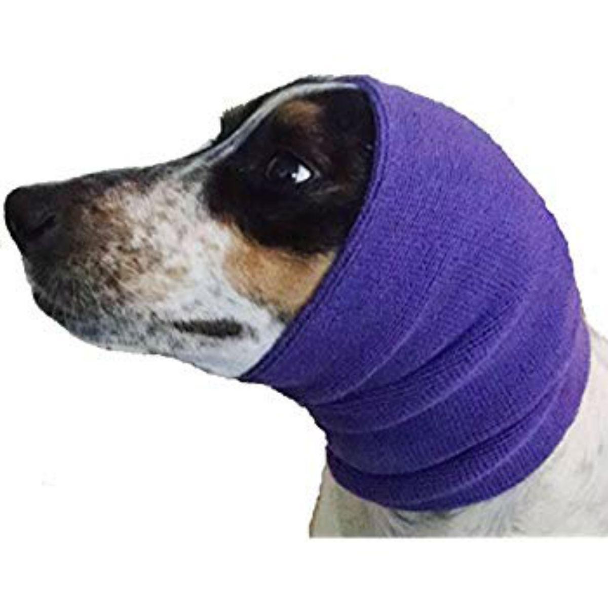 Happy Hoodie Dog Snood - Purple