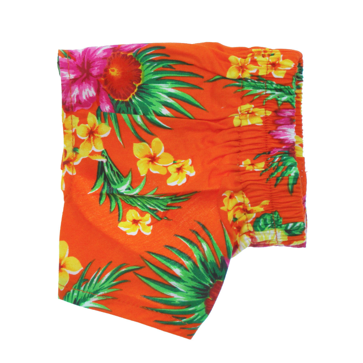 95f7f20be19 Hawaiian Swim and Board Dog Trunks - Orange
