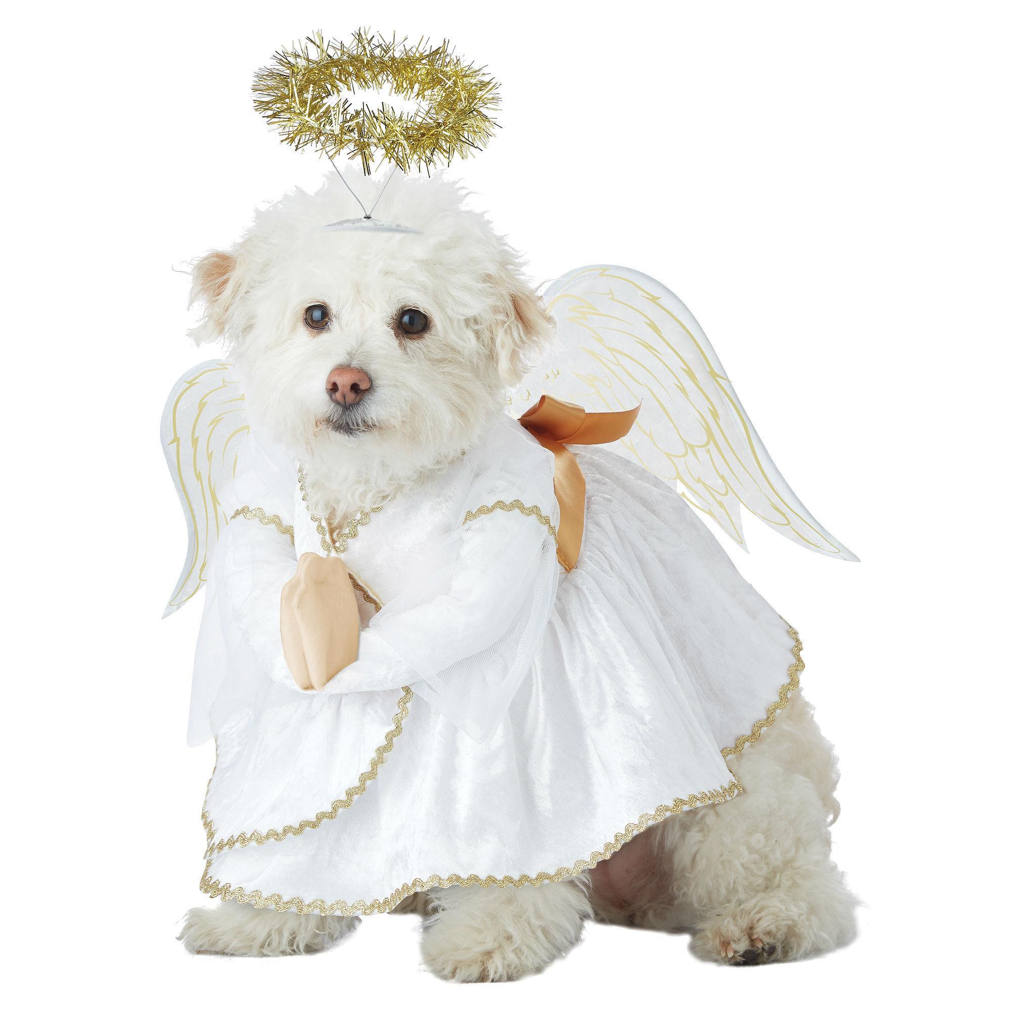 Heavenly Hound Halloween Dog Costume