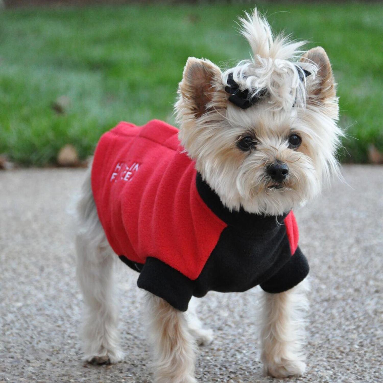 Highline Fleece Dog Coat by Doggie Design - Red and Black