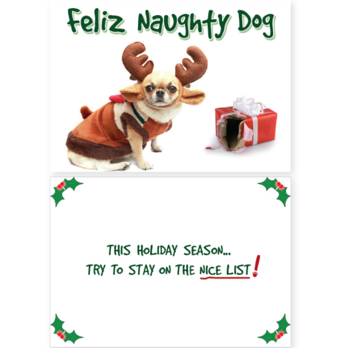 Holiday Greeting Card by Dog Speak - Feliz Naughty Dog