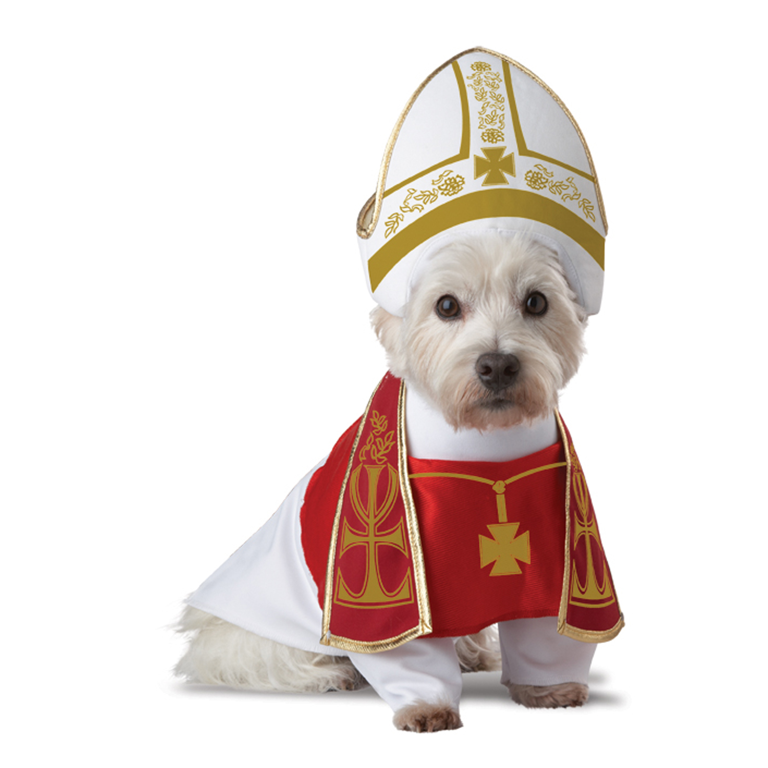 Holy Hound Dog Costume  sc 1 st  BaxterBoo : the pope costume  - Germanpascual.Com