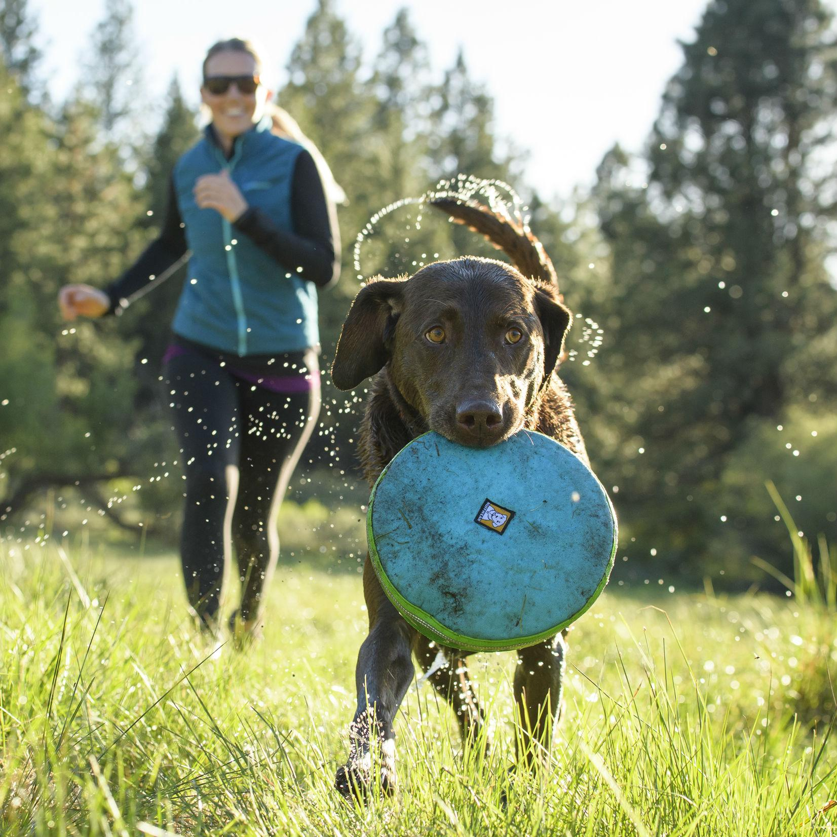 Hover Craft Disk Dog Toy by Ruffwear - Blue Atoll