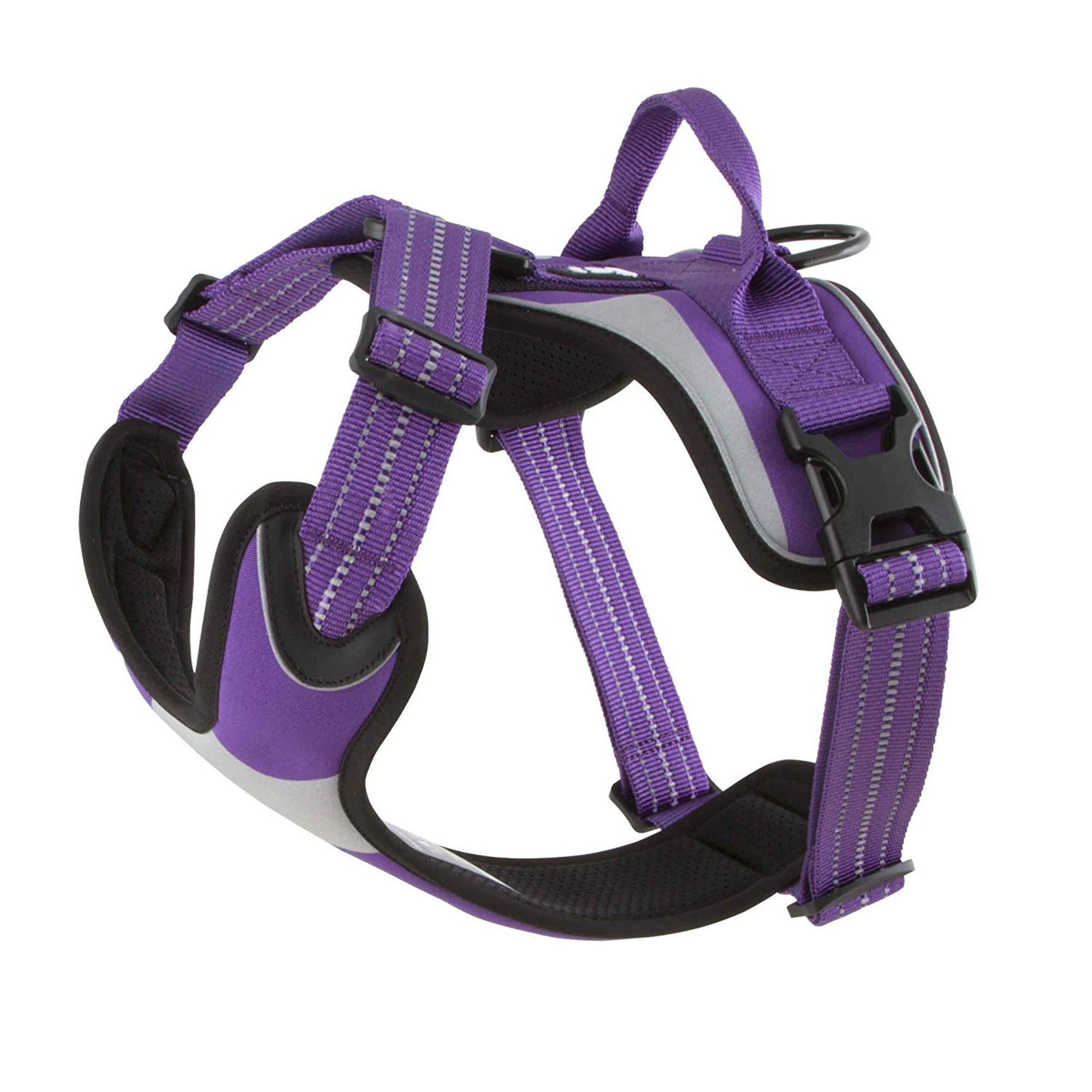 Hurtta Active Dazzle Dog Harness - Lupine