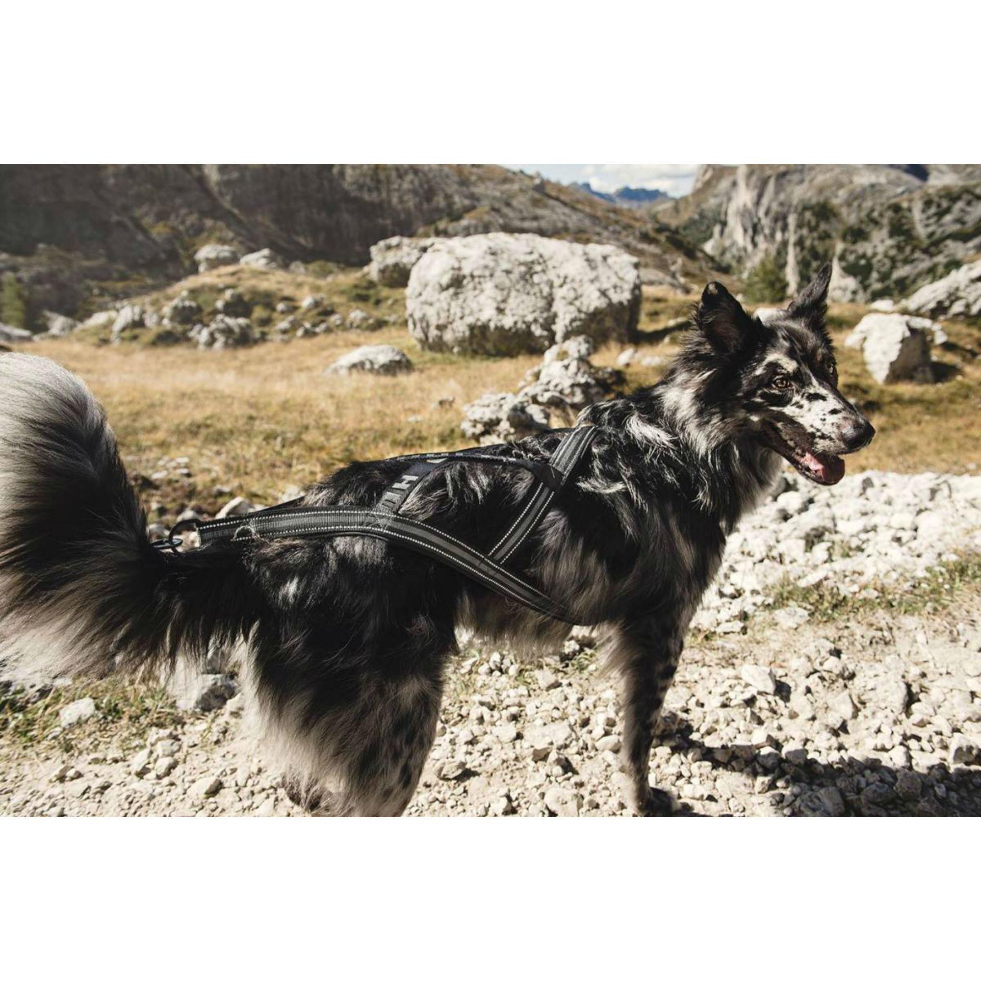 Hurtta X-Sport Dog Harness - Raven