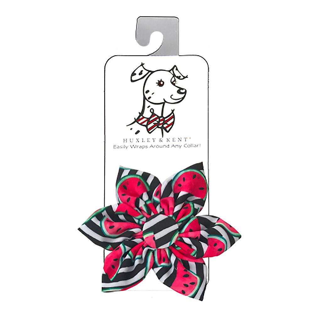 Huxley & Kent Pinwheel Dog and Cat Collar Attachment - Watermelon