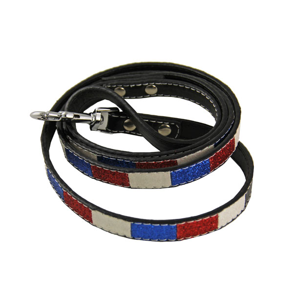 Ice Cream Dog Leash - Patriotic Bone