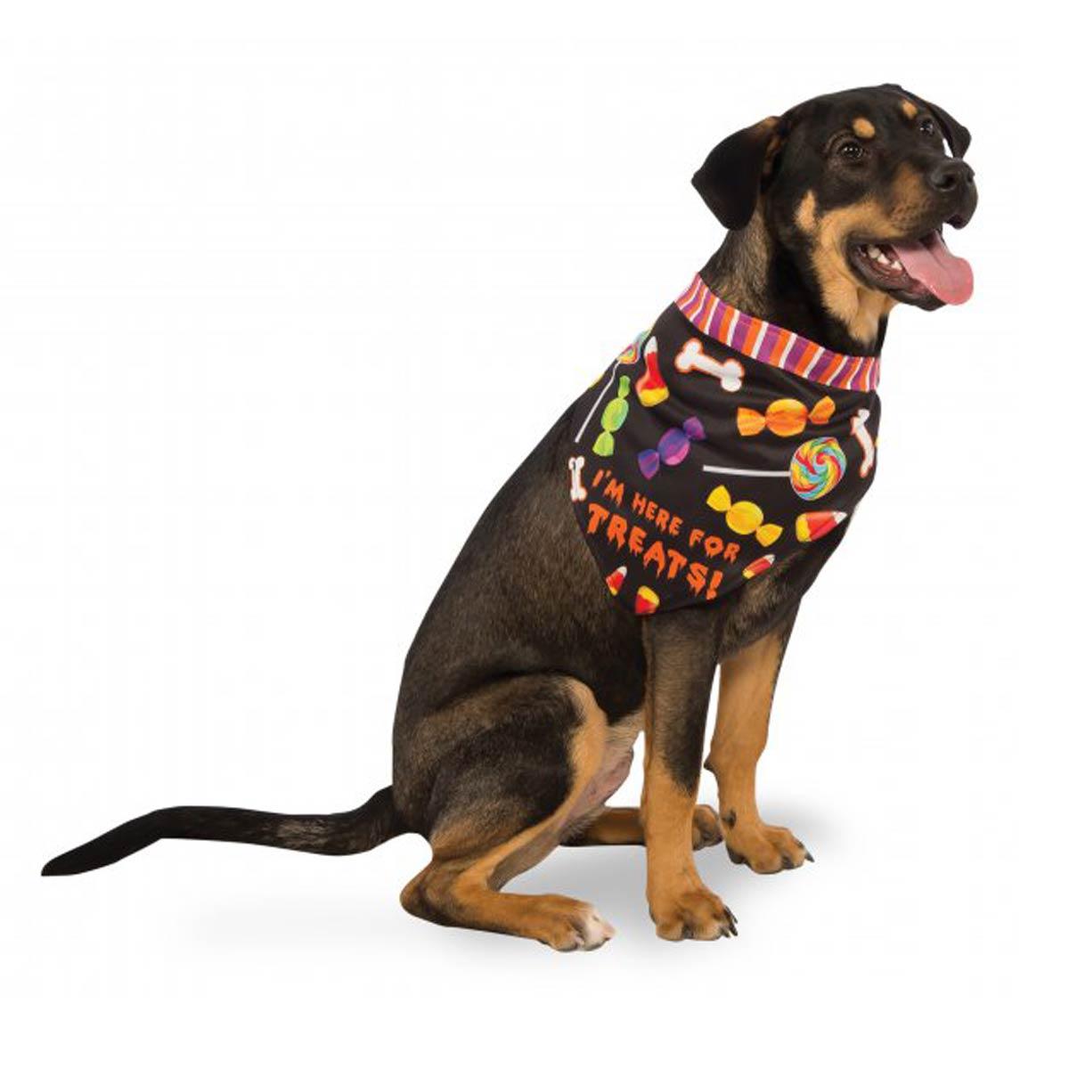 I'm Here for the Treats Halloween Dog Bandana