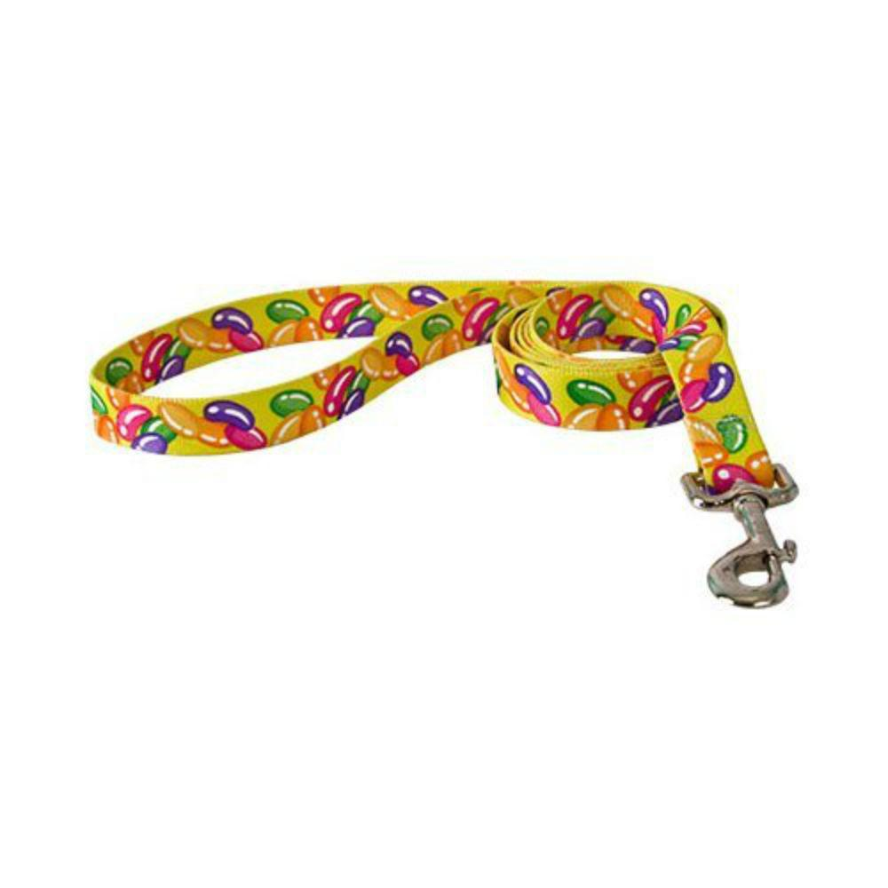 Jelly Beans Dog Leash by Yellow Dog