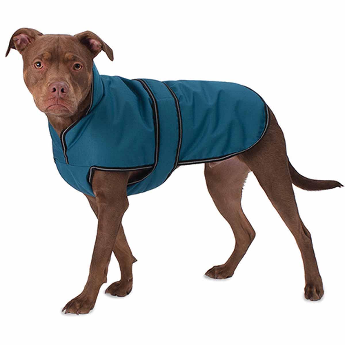 Juneau Dog Coat - Teal