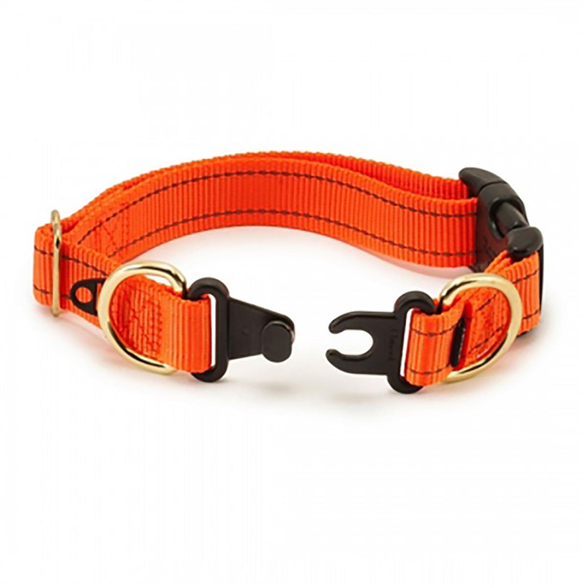 Breakaway Dog Collar