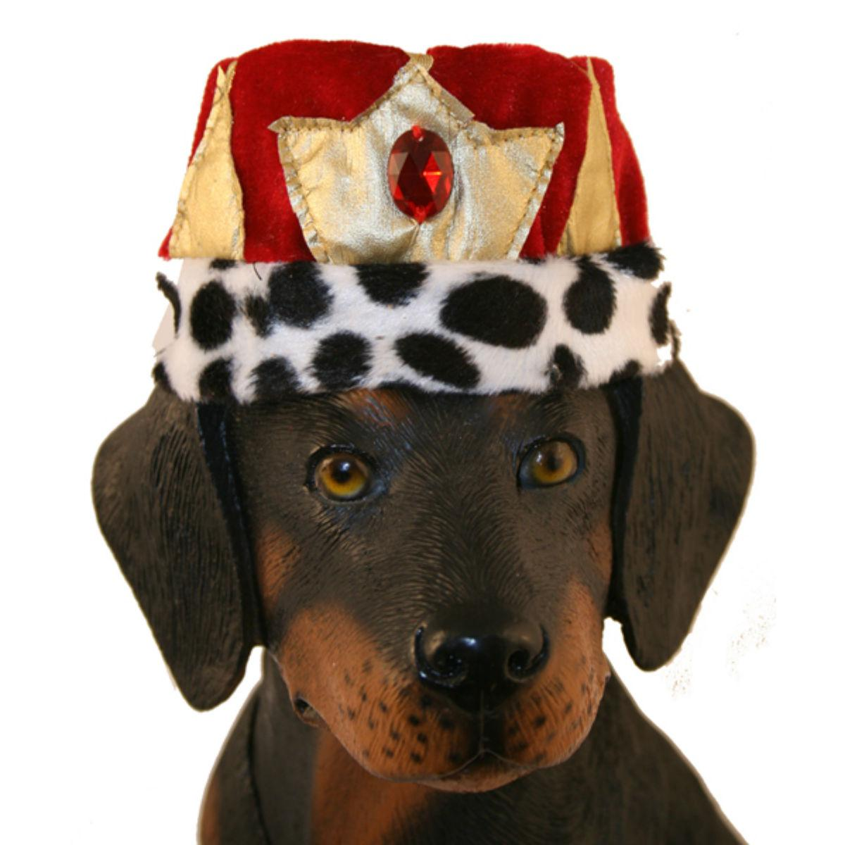 King Crown Hat Dog Costume