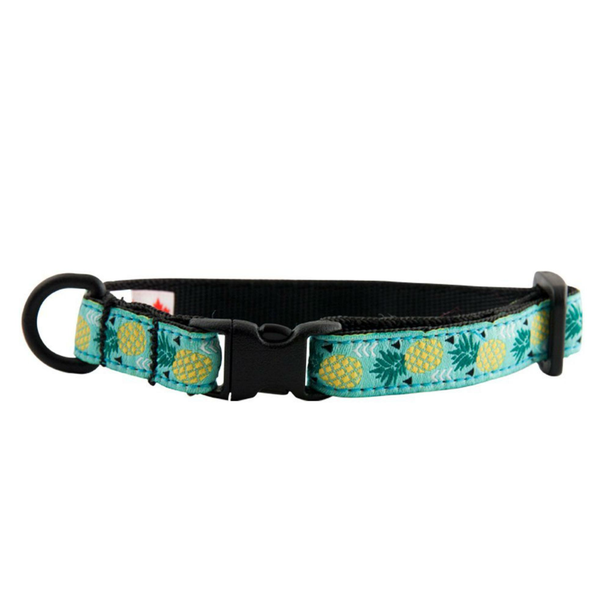 Kitty Breakaway Cat Collar - Pineapple Parade