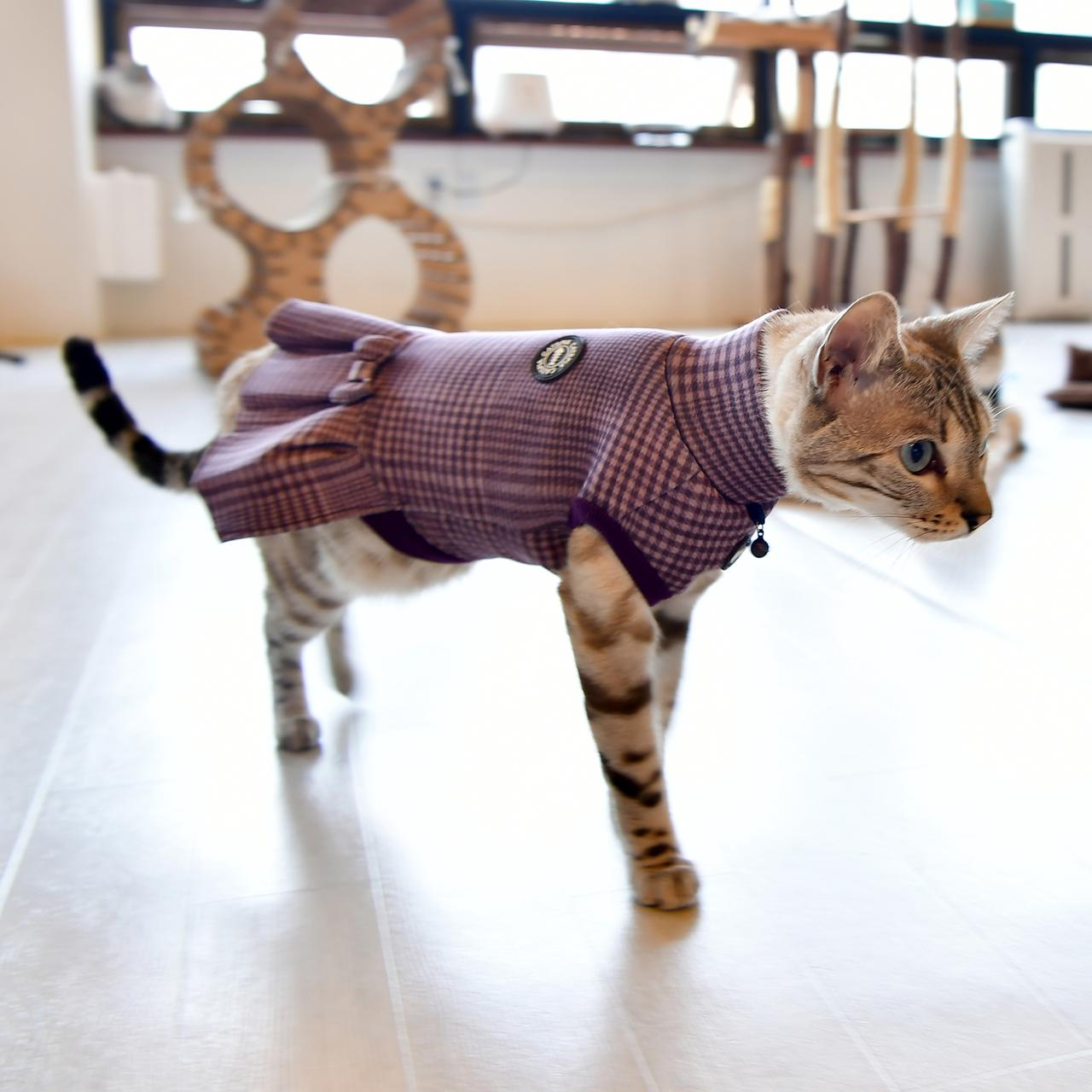 Leah Turtleneck Cat Dress by Catspia - Violet
