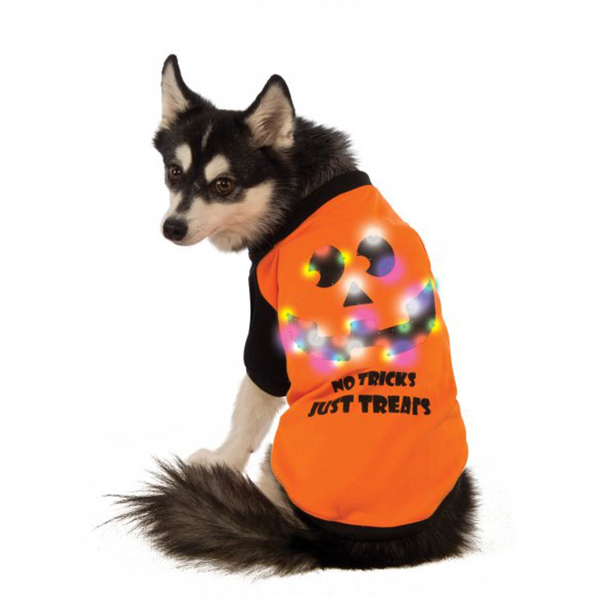 LED Halloween Dog T-Shirt by Rubie's Costumes with Same Day ...