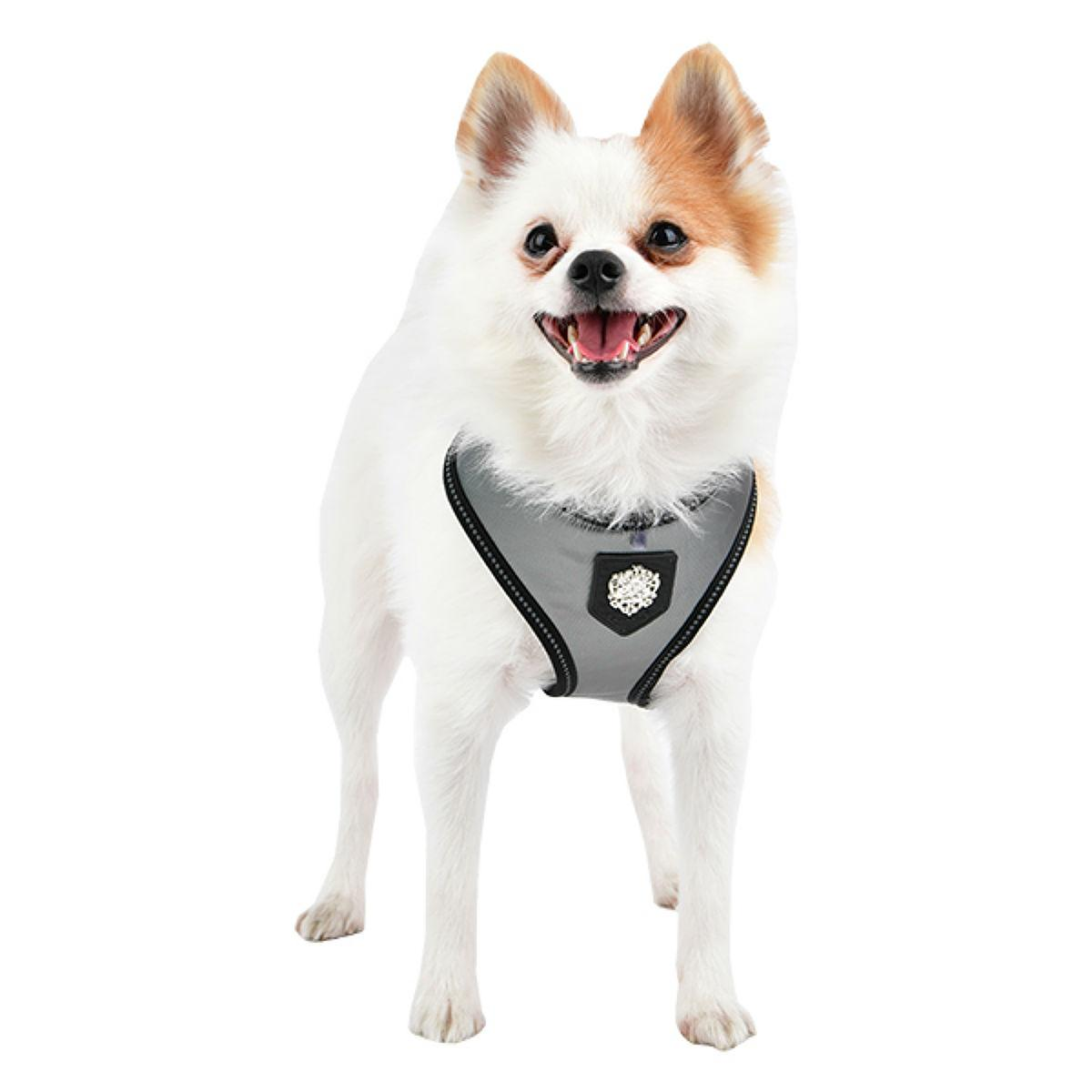 Legacy Basic Dog Harness By Puppia Life - Grey