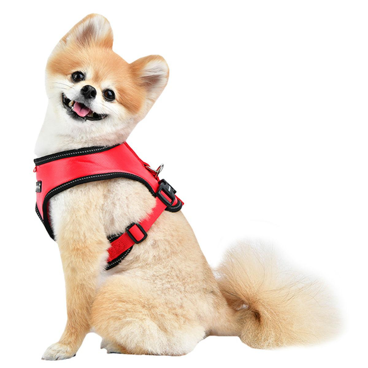 Legacy Snugfit Dog Harness By Puppia - Red
