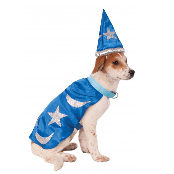 Light Up Wizard Dog Costume