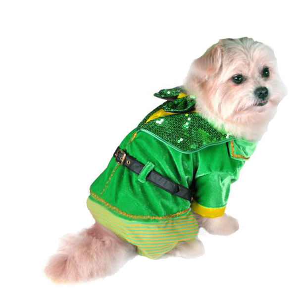 Little Leprechaun Boy Dog Jumper