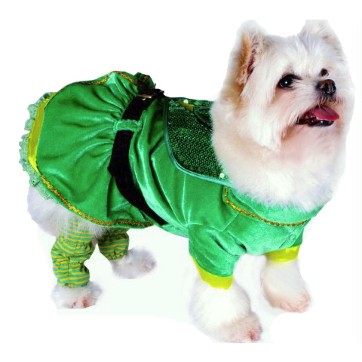 Little Leprechaun Girl Dog Costume