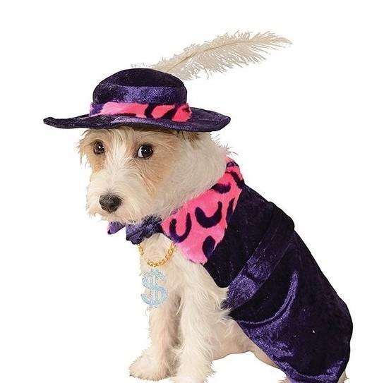 Mac Daddy Pimp Dog Halloween Costume