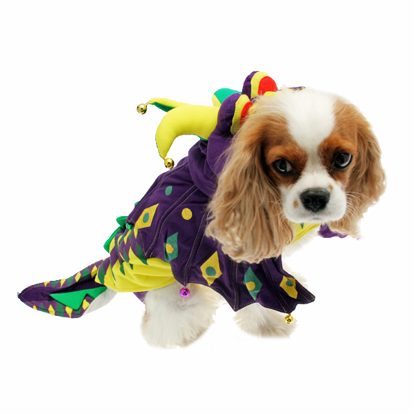 Mardi Paws Dragon Dog Costume  sc 1 st  BaxterBoo & Mardi Paws Dragon Dog Costume | BaxterBoo