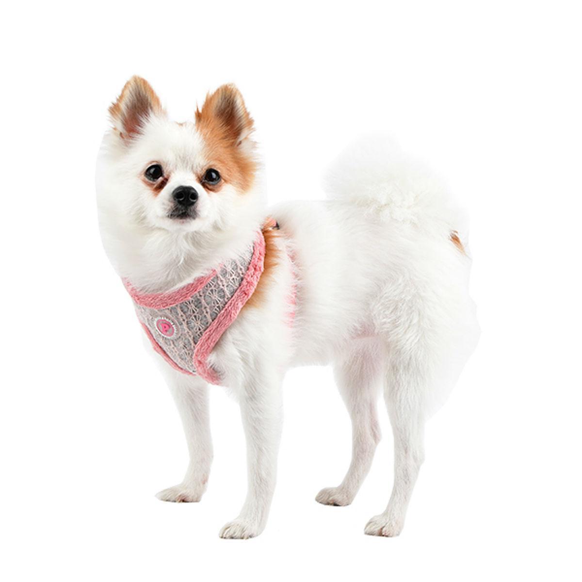 Margaux Basic Style Dog Harness By Pinkaholic - Pink